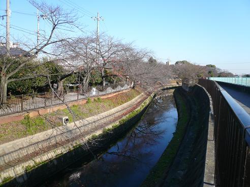 水路の今.jpg